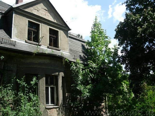 dscn45121 - Wucherei im Garten