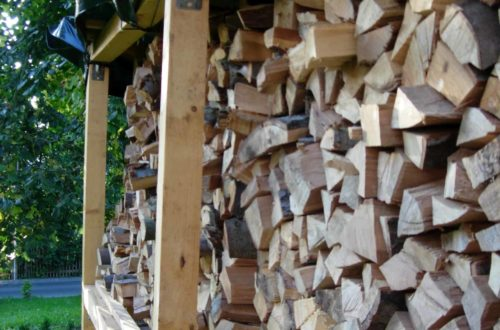 dscn7003 - Bau des Brennholz-Lagerregales im Garten